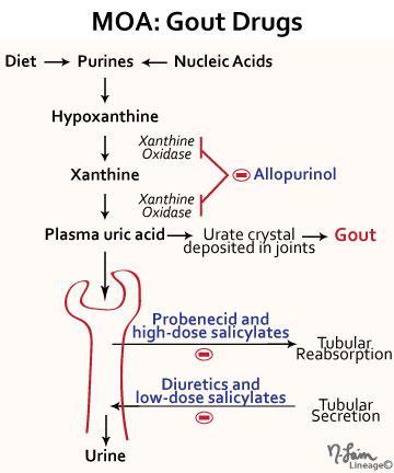 Gout prescription drugs