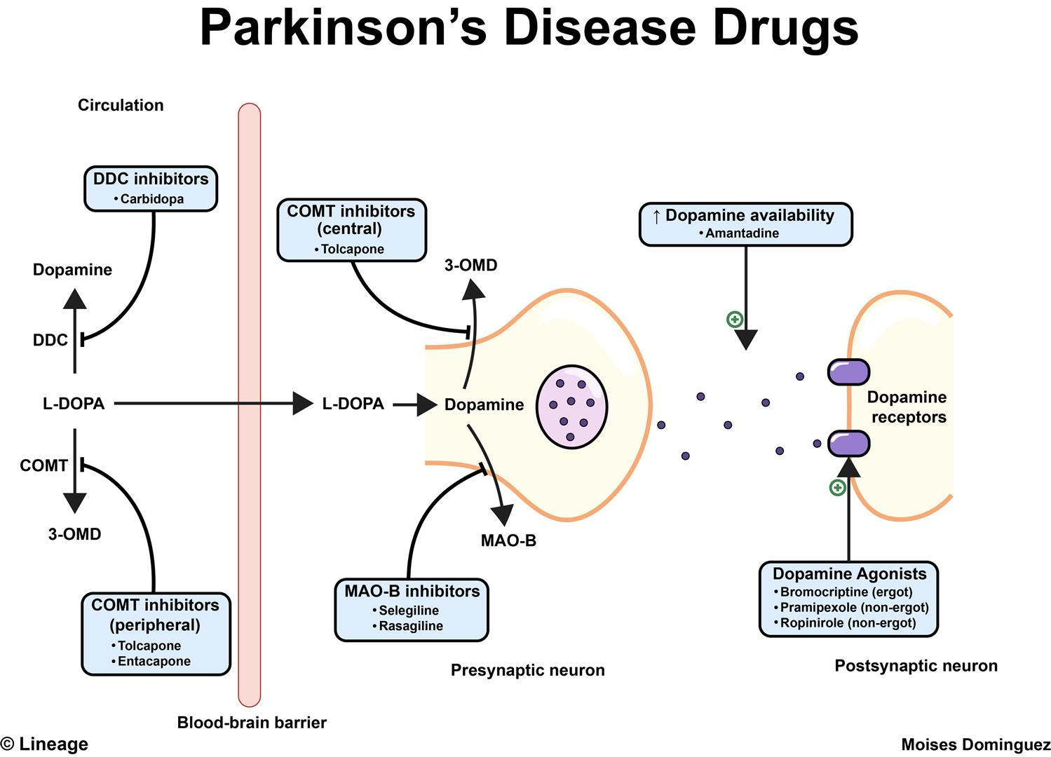 Parkinson S Disease Drugs Neurology Medbullets Step 2 3