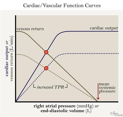 Cardiac / Vascular Function Curves - Cardiovascular ... on sd map, la map, mn map, ca map, sc map, mc map, ut map, az map, mo map, no map, or map, cu map, pm2.5 map, de map, colorado map, fl map, nc map, ihb map, un map,