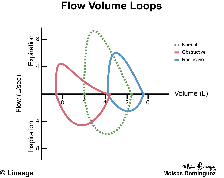 pressure-volume curve - respiratory