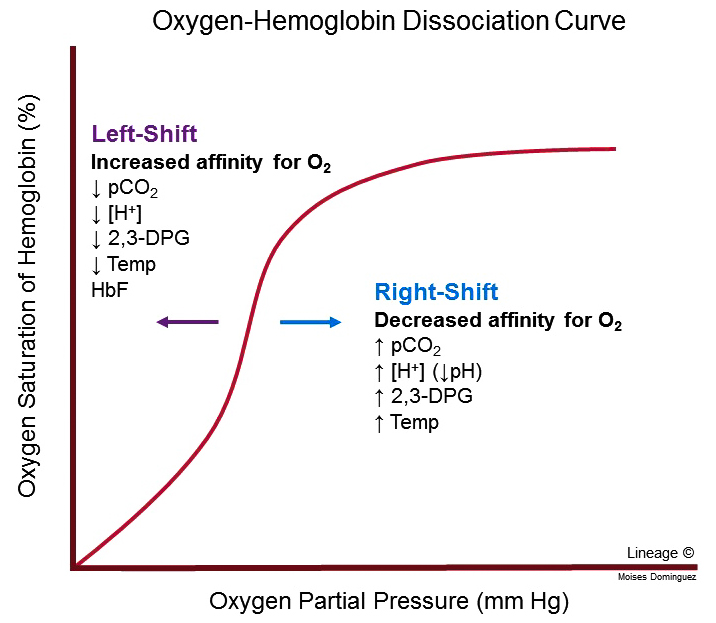 Oxygen-Hemoglobin Dissociation Curve - Respiratory - Medbullets Step 1
