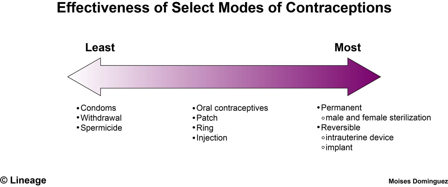 Sexuality and u contraception chart
