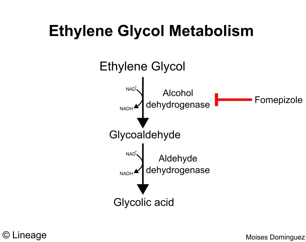Toxicology Drugs Medbullets Step 2 3