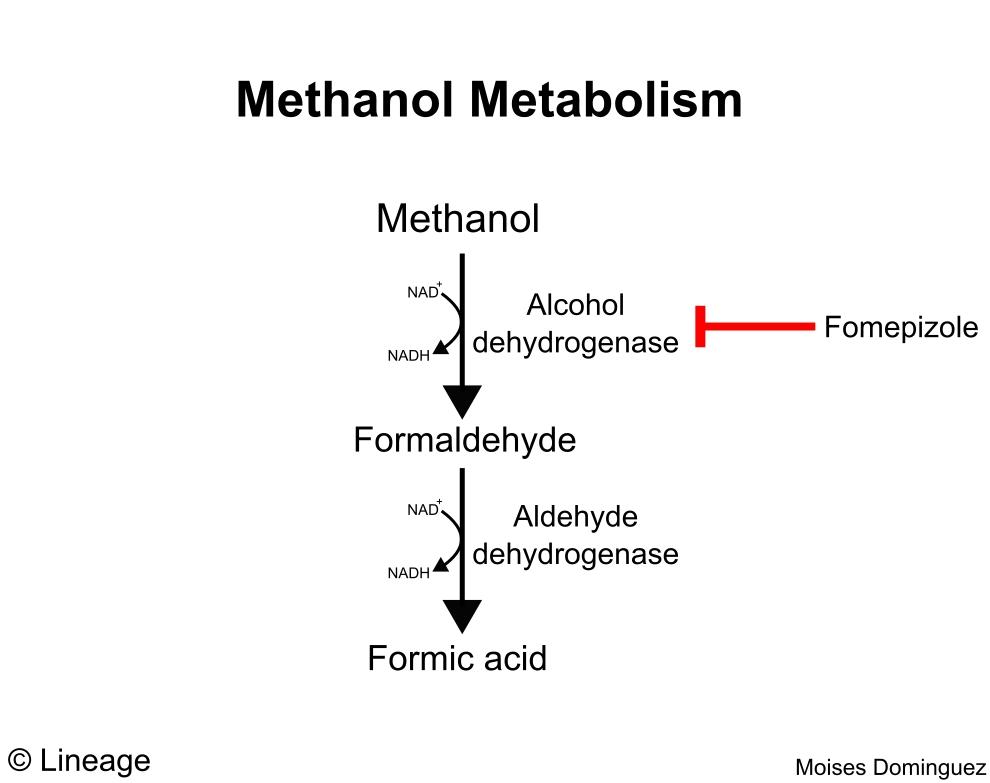 Toxicology - Drugs - Medbullets Step 2/3