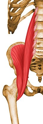 https://upload.medbullets.com/topic/121921/images/psoas.jpg